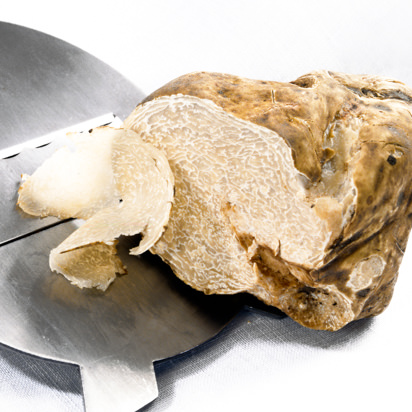 Whole Fresh White Truffles (Alba truffle)